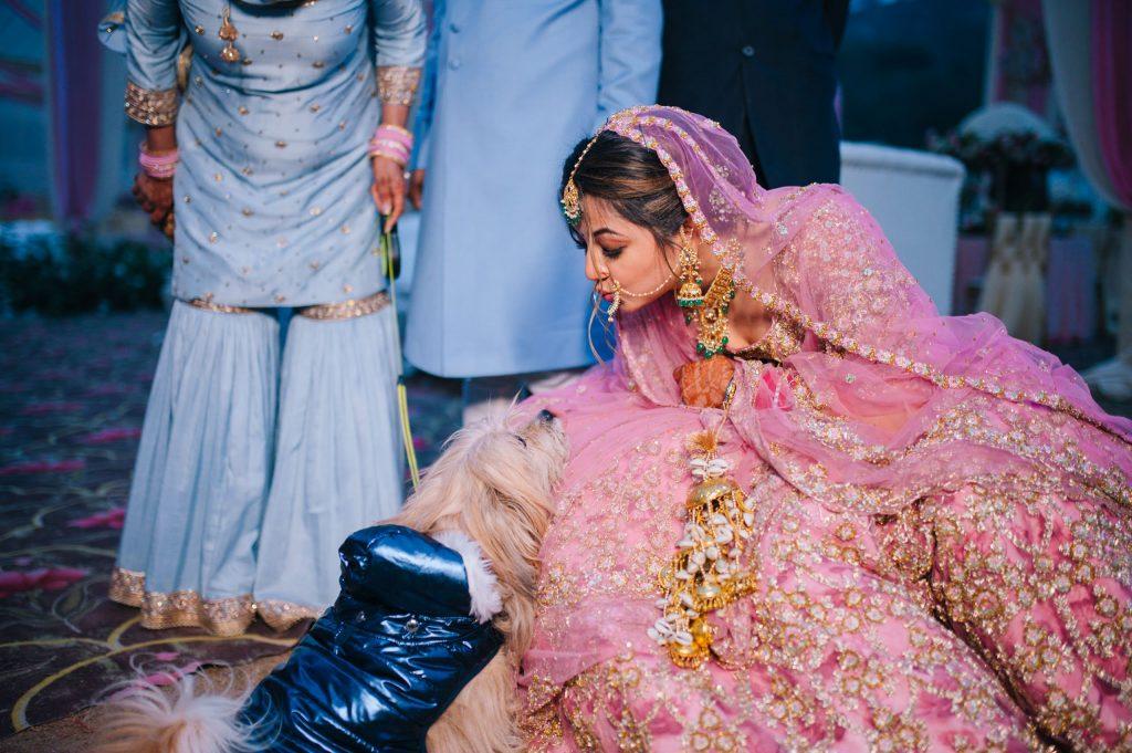Perfectly Planned NRI Wedding of Punjabi Couple- Gurpreet & Shiv, Wedding SIM 7110