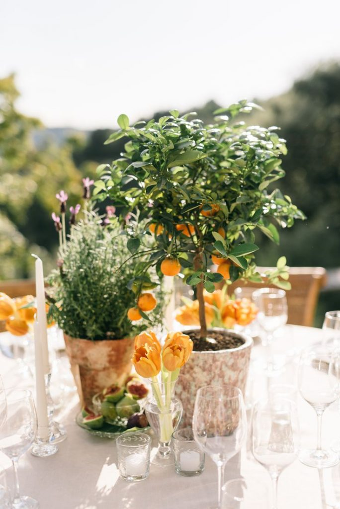 13 Stunning Backyard Decor Ideas for Intimate Weddings, 3